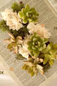 DIY Vintage Succulent Book Planters by Wednesday Featured on Green Wed...