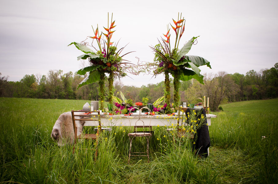 A Touch of Africa In Today's Stunning Color Filled Styled Wedding Shoot