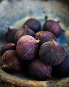 Design Seeds Deep Purple Fig