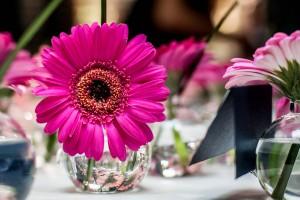 Jaime_Chad_Brantwyn_Estate_Wedding_Bartlett_Pair_Photography_18-h