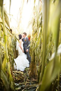 Stunning Alberta Farm Land Wedding Dripping In Rich Fall Colors   Photograph by NC Photography