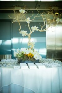 Modern Wedding At Denver Museum of Nature and Science With Touches of ...
