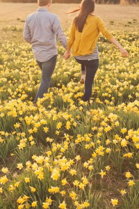 Young Love Filled Daffodil Field Engagement Session On A Family Farm I...