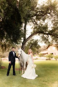 Wonderfully Luxurious Equestrian Loving Formal Wedding In Pink & W...