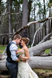 Glacier_Point_Yosemite_National_Park_Wedding_Amy_Atkins_Photography_24-v