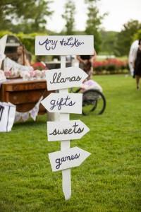 Offbeat_Whimsical_Wedding_Llamas_Grant_and_Deb_Photographers_10-v