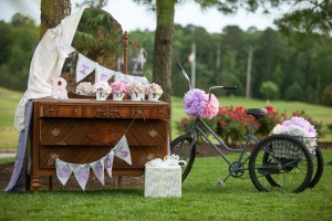 Offbeat_Whimsical_Wedding_Llamas_Grant_and_Deb_Photographers_14-h
