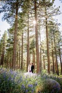 Peacock_Inspired_Country_Club_Wedding_Eric_Asistin_Photography_20-v