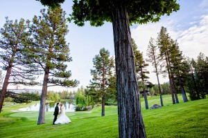 Peacock_Inspired_Country_Club_Wedding_Eric_Asistin_Photography_34-h