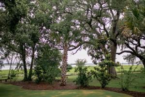 The_Lowndes_Grove_Plantation_DIY_Charleston_Wedding_STUDIO_1250_15-h