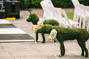 Quirky_Gibbes_Museum_of_Art_Charleston_Wedding_Jeanne_Mitchum_Photography_2-h