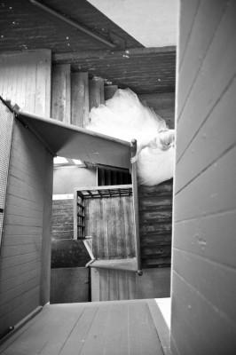 Rustic_Industrial_Winter_Wedding_dani_fine_photography_11-rv