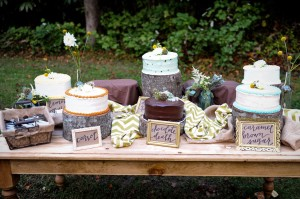 Country_Music_Singer_Emily_Hearn_Rustic_Country_Wedding_Stansberry_Photography_47-h