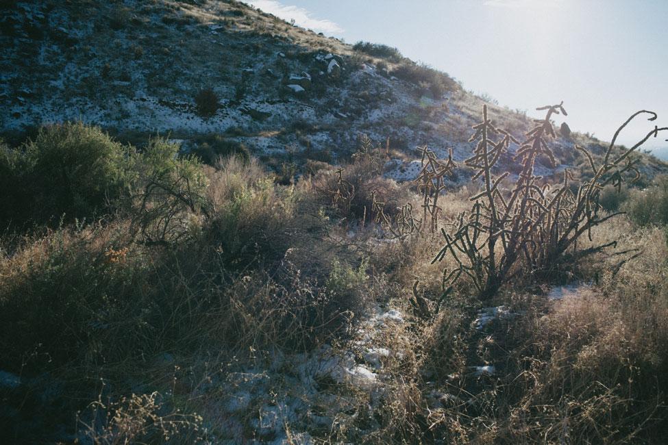 Free Spirited Boho Chic Albuquerque New Mexico Elopement | Photograph by Latisha Lyn Photography  https://storyboardwedding.com/free-spirited-boho-chic-albuquerque-new-mexico-elopement/