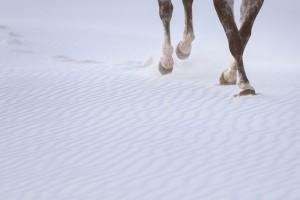 White_Sands_National_Monument_New_Mexico_Boho_Bride_Tony_Gambino_Photography_6-h