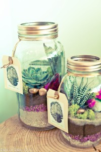 Why It Works Wednesday: 9 Terrariums That Are Prime For The Centerpiec...