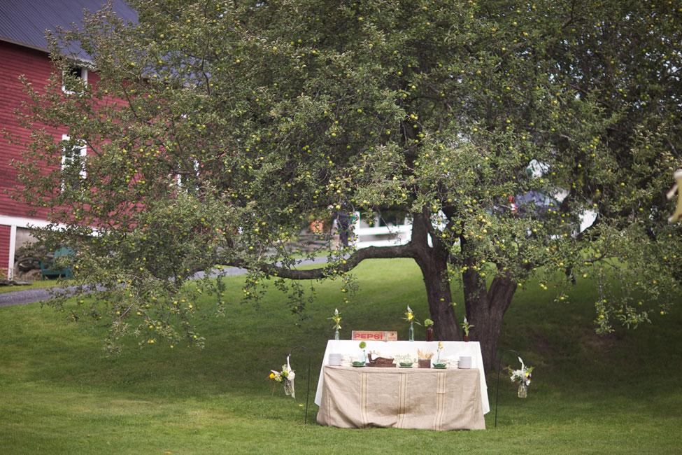 Storyboard Wedding Stowe Vermont Skinner Barn Wedding Sarah DiCicco Photography (54)
