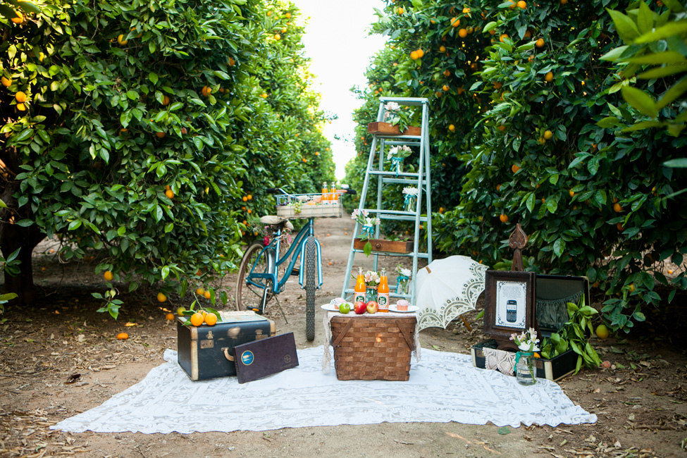 Wonderfully Darling Orchard Engagement Session At Lorimar Winery California | Photograph by Leah Marie Photography  https://storyboardwedding.com/orchard-engagement-session-lorimar-winery-california/