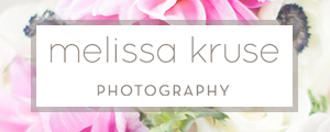 New York Wedding Photographer Melissa Kruse Photography Storyboard Ad Banner