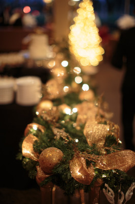 Palm_Springs_Desert_Christmas_Wedding_Kathleen_Geiberger_Art_20-rv