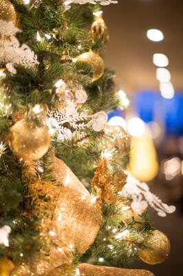Palm_Springs_Desert_Christmas_Wedding_Kathleen_Geiberger_Art_30-lv