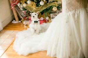 Texas_Christmas_Wedding_Luke_and_Cat_Photography_10-h
