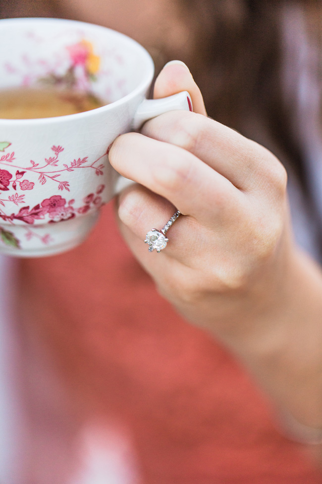 Vintage Tea Party Picnic Engagement Session | Photograph by Christy Nicole Photography  http://storyboardwedding.com/vintage-tea-party-picnic-engagement-session/