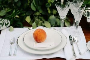 Virginia_Vintage_Estate_Wedding_Ali_Mclaughlin_photography_37-h