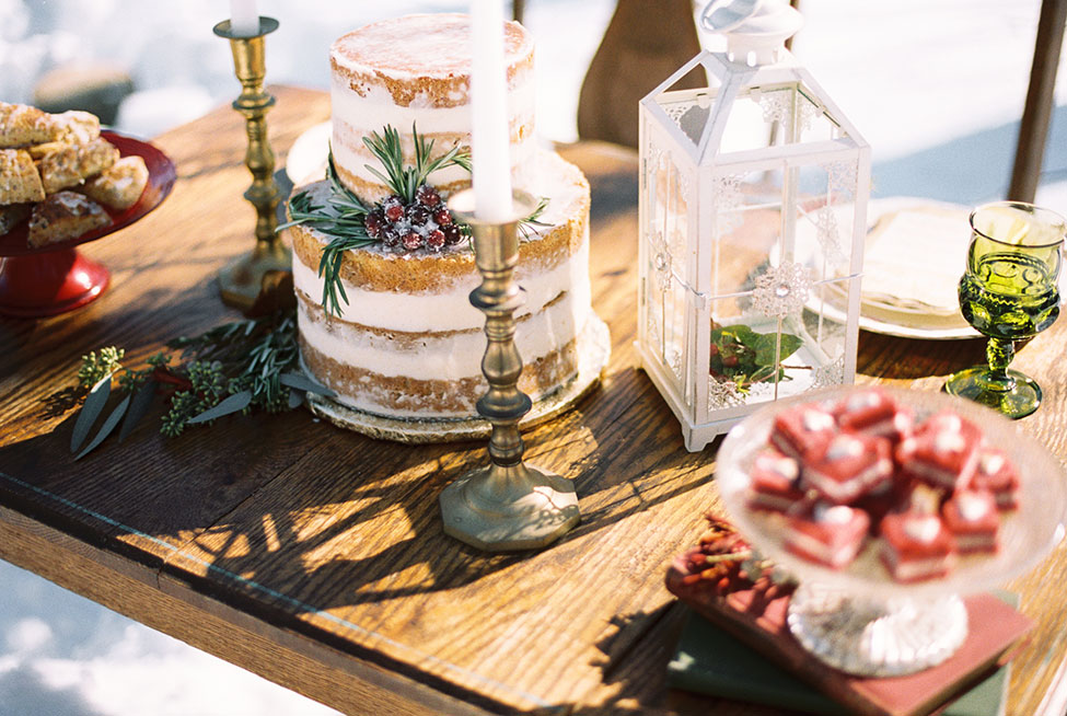 Rustic Chic Outdoor Winter Wedding In Kensington Park Michigan  | Photograph by Spencer Studios See The Full Story at https://storyboardwedding.com/rustic-chic-outdoor-winter-wedding-kensington-park-michigan/