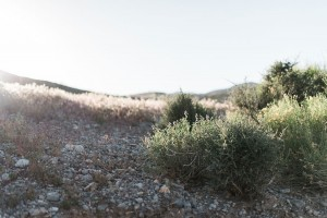 Bohemian_Canyon_Desert_Wedding_Kristen_Kay _Photography_30-h