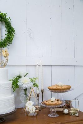 Grand_Texana_Dairy_Barn_Wedding_Photography_by_Niki_18-rv