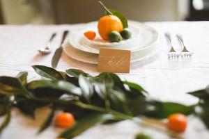 upscale_hip_wedding_diblasio_photography_10-h