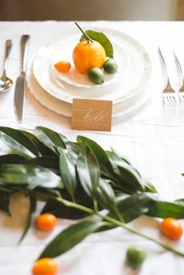 upscale_hip_wedding_diblasio_photography_8-lv