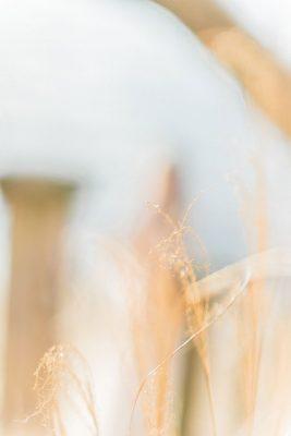 Organic_Fall_Bohemian_Bride_Manda_Weaver_Photography_11-rv