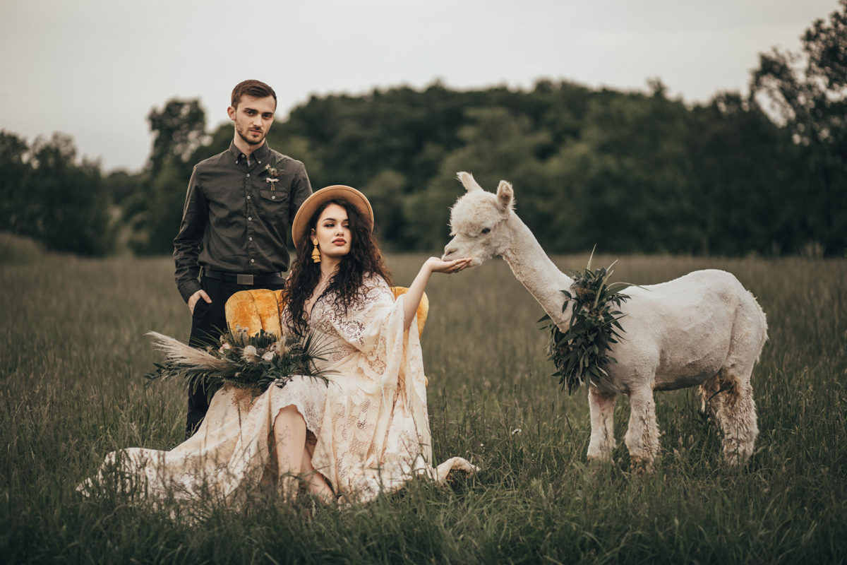 Animals in Engagement Photos