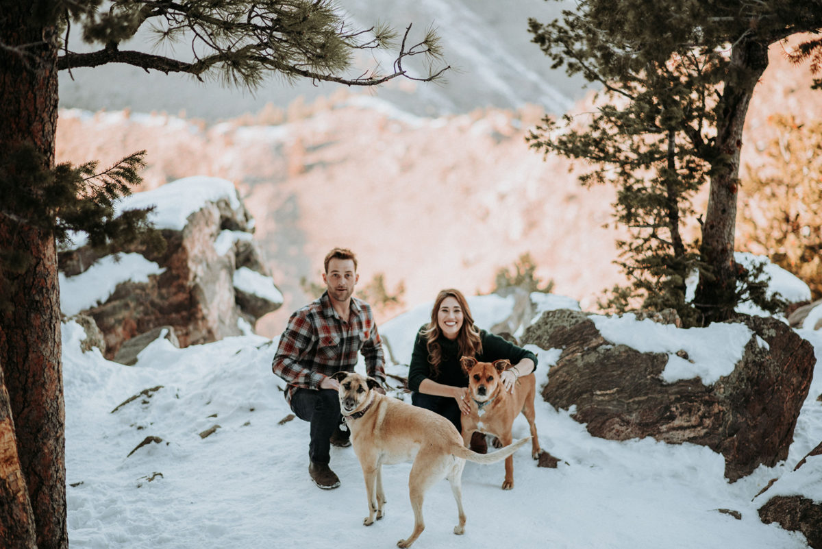 Pets in Engagement Sessions